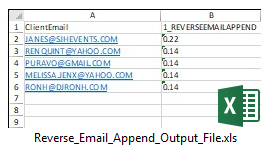 Reverse Email Append Output File Sample
