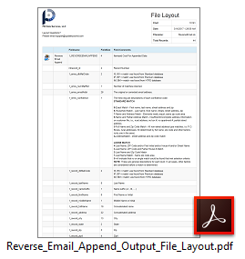 Reverse Email Append Output Layout File