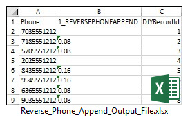 Reverse Phone Append Output File Sample